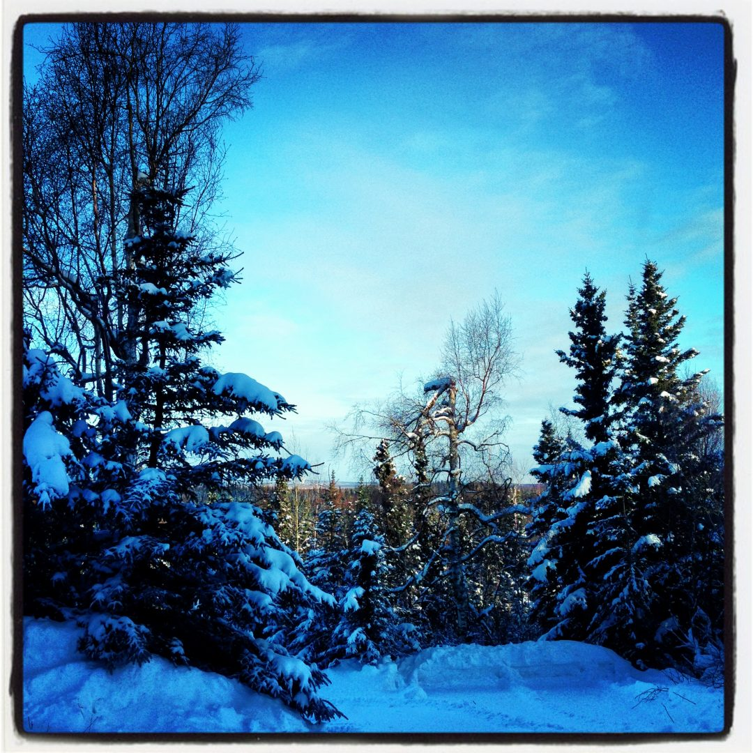 Winter in Anchorage